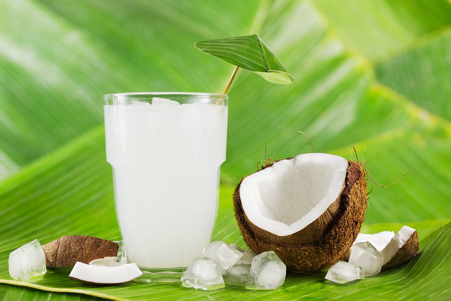 Sidel Fruit Drink Coconut